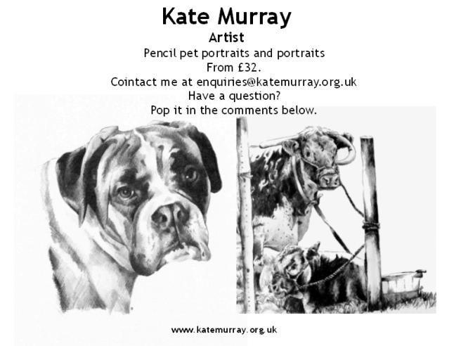 Pet portrait wordpress