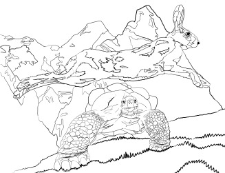 hare-and-tortise